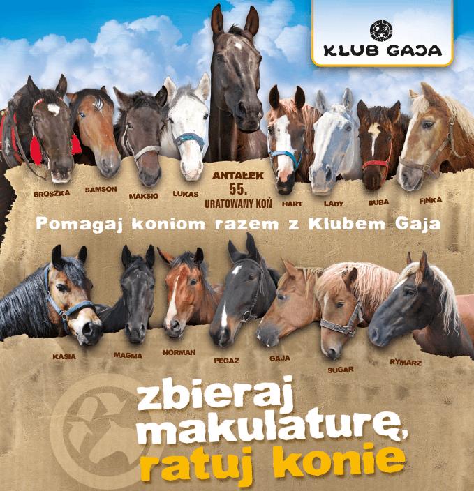 """Plakat akcji """"Zbieraj makularurę, ratuj konie"""""""
