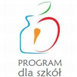 Projekt-Program dla szkół.